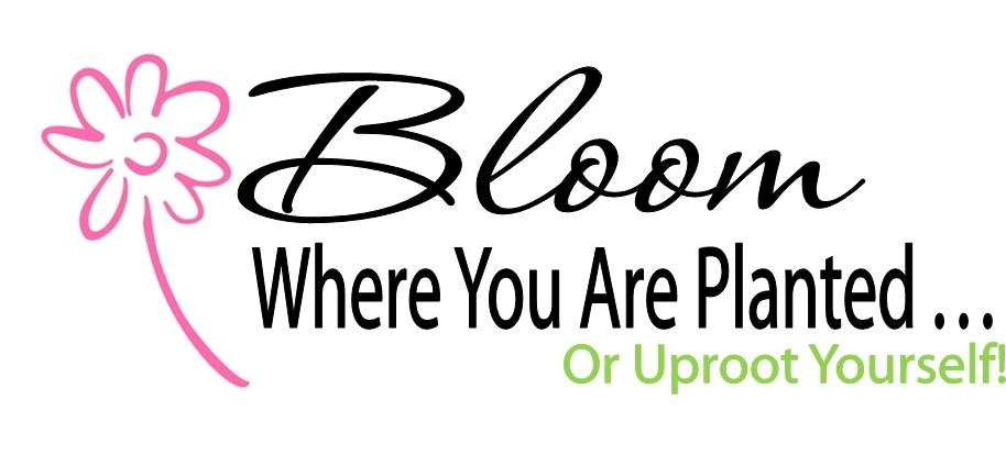 Bloom Where You Are Planted @ Chase House   Meredith   New Hampshire   United States